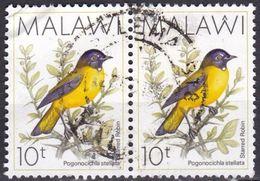 Malawi, 1994 - 10k Starred Robin, Coppia - Nr.533A Usato° - Malawi (1964-...)
