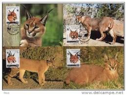 Somalia 1998 WWF W.W.F. MC X4 Caracal Cat Cats Lynx SOOMAALIYA Somali - W.W.F.