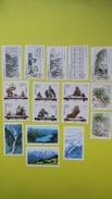Chine,  Année 1996,   Neuf  **  La Faune Et La Flore Environnement   (à Voir) - Stamps