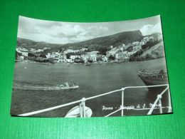 Cartolina Ponza - Spiaggia Di S. Maria 1960 Ca - Latina