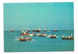 BAHRAIN - Race Of Traditinal Boats / Rowing - Bahrein