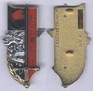 Insigne De La Promotion Kolwezi Du 3e Bataillon De L'Ecole Spéciale Militaire De St Cyr - Army