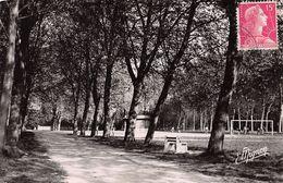 CPSM 10 ROMILLY SUR SEINE LA BECHERE - Romilly-sur-Seine