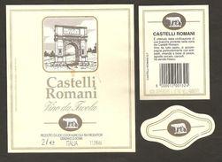 ITALIA - Etichetta Vino CASTELLI ROMANI Cantine COOP. AGRICOLA Bianco Del LAZIO - Arco Di Traiano, Lupa Di Roma - Witte Wijn