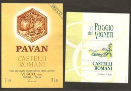 ITALIA - 2 Etichette Vino CASTELLI ROMANI Cantine VI.SCO E NA.VE. Bianco Del LAZIO - Witte Wijn