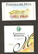 ITALIA - 2 Etichette Vino CASTELLI ROMANI Cantine FONTANA DEL DUCA E MAESTRI CANTINIERI Bianco Del LAZIO - Witte Wijn