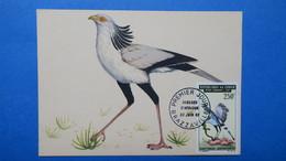 Carte Maximum, Congo, Brazaville ,   Année 1967,  N° PA 52 Oiseaux - Kongo - Brazzaville
