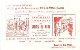 Buvard SALINS DU MIDI Les Bonnes Laitières Ont De Grands Besoins En SELS MINERAUX A L'étable Au Pré - Agriculture