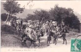63 - Puy De Dome -  Une Caravane Au MONT DORE - Le Mont Dore