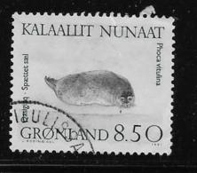 GREENLAND, 1991 USED # 238      Used  PHOCA VITULINA - Groenland