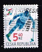 Tschechien 2002, Michel# 314 O Winter Paralympic Games In Salt Lake City - Czech Republic