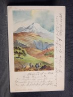 Tanzania Kilima-Njaro -12__(17422) - Tansania