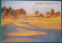 SAHARA OF DOUZ - TUNISIE - Túnez