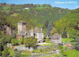 15 - Polminhac - Le Château De Pesteils - Vue Aérienne - France