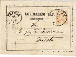 CTN49-11 -  EP CP D'HONGRIE UTILISEE AU DEPART DE FIUME POUR TRIESTE JUILLET 1873 - Sonstige