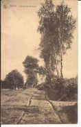 GENK: Chemin Des Bouleaux - Genk
