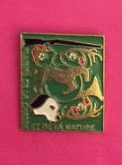 PLAISIR DE LA CHASSE ET DE LA NATURE - Badges