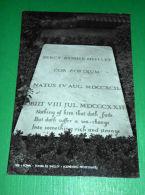 Cartolina Roma - Tomba Di Shelley - Cemeterio Protestante 1950 Ca. - Roma (Rome)
