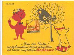Buvard  Kadavox Bien Sûr Maître! Vos Déclarations Seront Enregistrées Sur Bande Magnétique Kodavox - Cinéma & Theatre