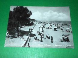 Cartolina Pineto ( Teramo ) - Spiaggia E Pineta  1964 - Teramo