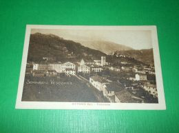 Cartolina Vittorio Veneto - Panorama 1925 Ca ( N. 1 ) - Treviso