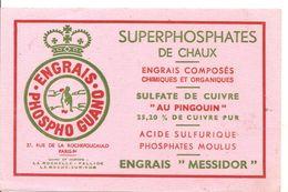 Buvard PHOSPHO GUANO ENGRAIS Superphosphates De Chaux Engrais MESSIDOR - Agriculture