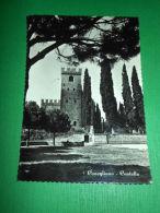 Cartolina Conegliano - Castello 1956 - Treviso