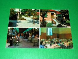 Cartolina Marina Di Massa - Villa Gioietta - Viale Delle Pinete 1965 Ca - Massa