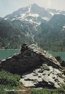 VIE EN MONTAGNE--voir 2 Scans - Rhône-Alpes