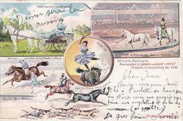 Cirque Barnum And Bailey Limited - Grösste Schaustellung Der Erde - Horse / Chevaux - Circo