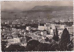 83,VAR,TOULON,VUE PANORAMIQUE - Toulon