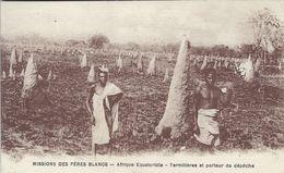 Afrique Equatoriale -Missions Des Peres Blancs.  Termites.      S-3576 - Postcards