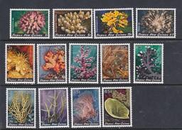 Papua New Guinea SG 438-451 1982-83 Corals MNH - Papouasie-Nouvelle-Guinée