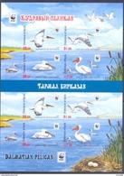 2017. Kyrgyzstan, WWF, Birds, Dalmatian Pelican, Sheetlet IMPERFORATED, Mint/ ** - Kyrgyzstan