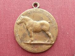 BELGIQUE Médaille Ministère Van Landbouw - Andere
