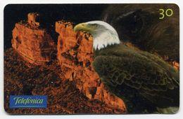 Aigle Oiseau Bird Télécarte Phonecard Telefonkarte (S.173) - Aquile & Rapaci Diurni