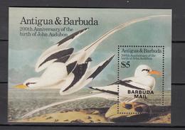 Barbuda Mail 1985,1V In Block,ovpt Barbuda Mail,Audubon,birds,,vogels,vögel,oiseaux,pajaros,uccelli,MNH/Postfris(L3075) - Oiseaux