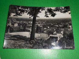 Cartolina Conegliano - Panorama 1950 Ca - Treviso