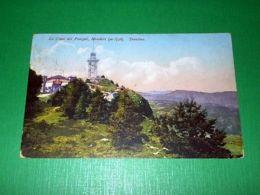 Cartolina La Cima Del Penegal - Mendola 1928 - Trento