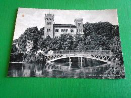 Cartolina Treviso - Castello Romano 1953 - Treviso