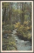 Stream At Castle Horneck, Penzance, Cornwall, C.1905 - Peacock Postcard - Other