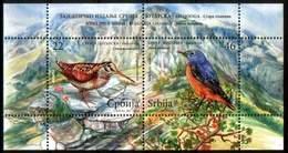 Serbia 2009 Fauna, Birds, Ecology, Joint Issue With Bulgaria, Scolopax Rusticola, Monticola Saxatilis, Block, MNH - Vögel