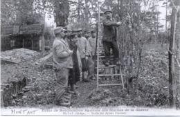 09 - Montaut : Ecole De Reéducation Agricole Des Mutilés De La Guerre - Taille Des Arbres Fruitiers. - France
