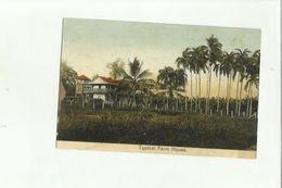 138483 ANTICA CARTOLINA TYPICAL FARM HOUSE  REPUBLIC OF COSTA RICA - Costa Rica