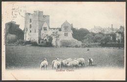Ludlow Castle, Shropshire, 1903 - Valentine's Postcard - Shropshire