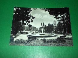 Cartolina Vittorio Veneto - Giardini Pubblici 1963 - Treviso