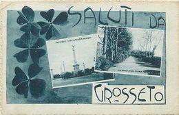 A-17.6473 :  SALUTI DA GROSSETO - Grosseto