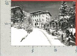 CARTOLINA VG ITALIA - CORTINA D'AMPEZZO (BL) - Casa Montana REGINA MUNDI Suore Canossiane - 10 X 15 - ANN. 1964 - Belluno