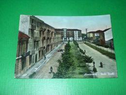 Cartolina Alessandria - Viale Tivoli 1956 - Alessandria