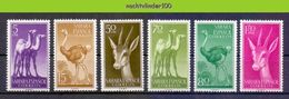 Mwe2459 FAUNA STRUISVOGEL KAMEEL HERT DROMEDAIRE CAMEL OSTRICH BIRDS DEER AVES OISEAUX SAHARA ESPANOL 1957 PF/MNH # - Briefmarken